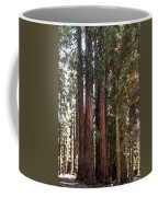 The House Group Giant Sequoia Trees Sequoia National Park Coffee Mug