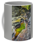 The Narrows Of Watkins Glen Coffee Mug