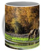 The Salt River Wild Horses  Coffee Mug