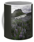 Thofafoss Waterfall Iceland 1571 Coffee Mug