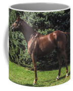 Thoroughbred Stallion Coffee Mug