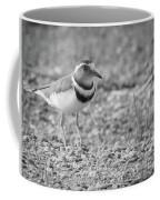 Three Banded Plover Coffee Mug