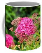 Tiny Pink Spirea Flowers Coffee Mug