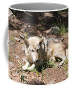 Tour Of Rocky Mountain Wildlife Foundation Coffee Mug