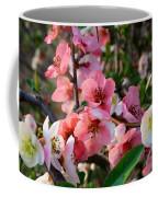 Toyo-nishiki Quince Coffee Mug