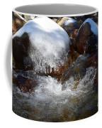 Trail To Tokopah Falls Coffee Mug