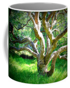 Tree In Golden Gate Park Coffee Mug
