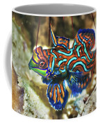 Tropical Fish Mandarinfish Coffee Mug
