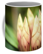 Tropical Garden 7 Coffee Mug
