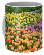 Tulips Galore  Coffee Mug