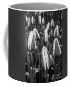 Tulips 3 Coffee Mug