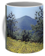 143419-turk Mountain Overlook  Coffee Mug