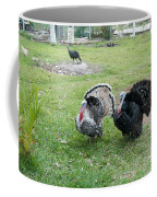 Turkeys In The Yard At Laguna Guerrero Coffee Mug