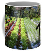 Vegetable Garden  Coffee Mug