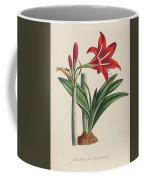 Vegetable Coffee Mug