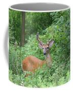 Velvet Buck Coffee Mug