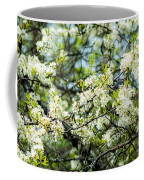 Vermont Apple Blossoms Coffee Mug