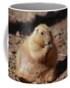 Very Large Overweight Prairie Dog Sitting In Dirt Coffee Mug