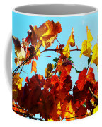 Vineyard 12 Coffee Mug