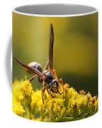 Wasp On Wildflower Coffee Mug