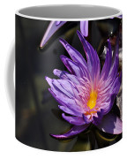 Water Floral Coffee Mug