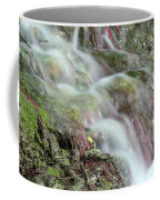 Water Spring Scene Coffee Mug