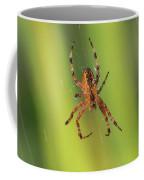 Web Walker Coffee Mug