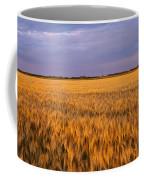 Wheat Crop In A Field, North Dakota, Usa Coffee Mug