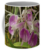 White And Purple Orchids Coffee Mug