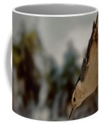 White Breasted Nuthatch In The Snow Coffee Mug