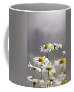 White Daisies Coffee Mug by Carlos Caetano