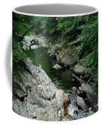 Mad River Coffee Mug