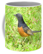 White-rumped Shama Coffee Mug