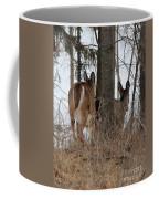 White-tailed Deer Coffee Mug