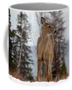White-tailed Deer Three Coffee Mug