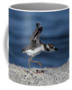 Wilson's Plover Coffee Mug