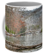 Winter Landscape At Hungry Mother State Park Coffee Mug