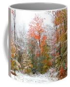 Winterfall  Coffee Mug
