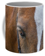 Wonder Pony Coffee Mug