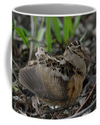 Woodcock In The Woods Coffee Mug