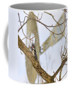 Woodpecker And Windmill Coffee Mug