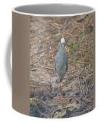 Yellow Crowned Night Heron At Tidal Creek Coffee Mug