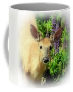 Young Buck Among The Lupin Coffee Mug