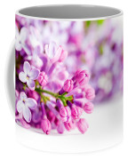Young Spring Lilac Flowers Blooming Coffee Mug