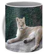 Zoo Lion Coffee Mug