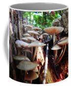 10-15-16--0704 Don't Drop The Crystal Ball Coffee Mug