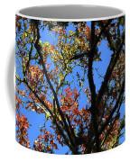 10-15-16--0776 Blue Sky # 2 Don't Drop The Crystal Ball Coffee Mug