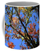 10-15-16--0777 Blue Sky # 3 Don't Drop The Crystal Ball Coffee Mug