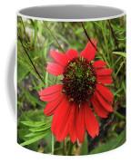 10-27-16--1982 Echinacea Cheyenne Spirit Don't Drop The Crystal Ball Coffee Mug