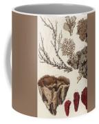 Aquatic Animals - Seafood - Algae - Seaplants - Coral Coffee Mug